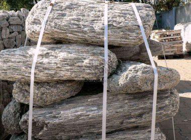 Solitérní kámen - zkamenělé dřevo